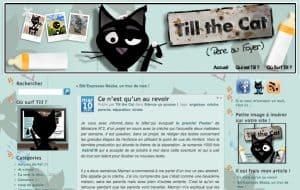 Tillthecat